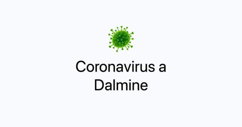 Coronavirus a Dalmine: tutte le informazioni