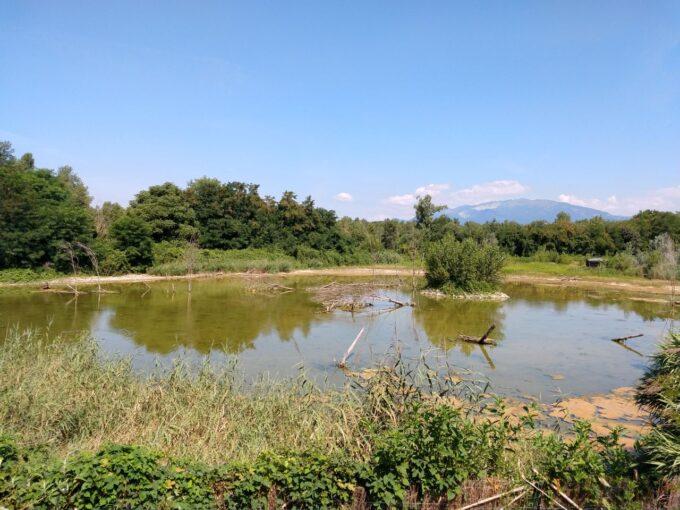 Perché l'oasi del Basso Brembo non ha abbastanza acqua durante l'estate?
